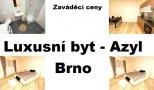 Azyl, Pastviny, Brno